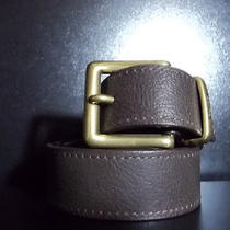 Levis Brown Belt Photo