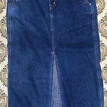 Levis Field Skirt Womens Designer Blue Denim Skirt Size 10 Pet Ladies Dress Cute Photo