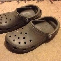 Light Brown Crocs Photo