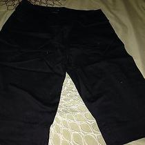 Limited Black Walking Shorts Photo