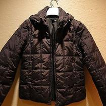 Limited Edition h&m Sweden Woman Quilted 2 in 1 Jacket Vest Shell Coat New M Photo