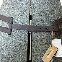 Linea Pelle Leather Belt Medium Photo