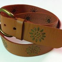 Linea Pelle Vintage Genuine  Leather Studded Hip Starburst Belt Sz L Excel Photo
