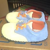 Little Blue Lamb Shoes Photo