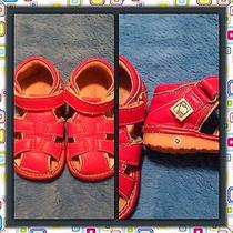 Little Lamb Baby Boy Squeaky Red Leather  Shoes Size 5  Fun  Fun ) Photo
