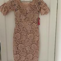 Little Mistress Chloe Lewis Blush Dress Size 12 Bnwt Photo