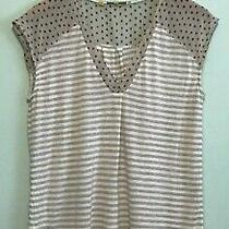 Little Yellow Button Anthropologie Beautiful Beige Stripe Blouse Top Large Photo