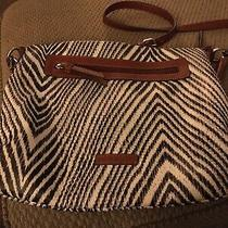 Liz Claiborne Canvas Zebra Animal Print Hobo Shoulder Bag Used Photo