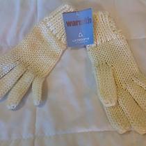 Liz Claiborne Cream / Ivory Warmth Ladies Gloves Nwt Photo