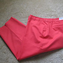 Liz Claiborne Crop Pants  Nice Stretch  Size 24w  Nwt   Great Color Coral Photo