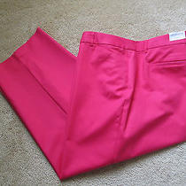 Liz Claiborne Crop Pants  Nice Stretch  Size 24w  Nwt   Great Color Beach Rose Photo