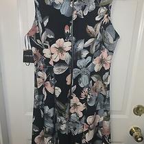 Liz Claiborne Dress Size 10 Color Navy Blush From  Jcp Photo