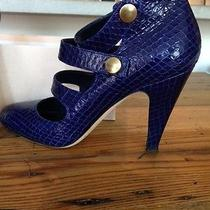 Loeffler Randall Shoes (Blue) Photo