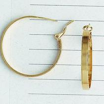 Loop Hoop Earring 14 Kt Rose Gold Filled Sar0013r Vanesa Duran Photo