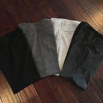 Lot 4 Pairs Express Editor Publicist Work Career Dress Pant Size 2 Photo