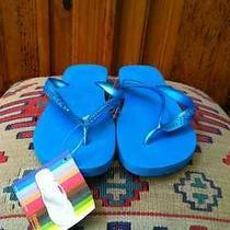 Lot 5 Pairs Havaianas Flip Flop Sandals 2 lt.blue 1 Wht 1 Green 1 Pink Nwt Photo