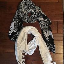 Lot of 2 Express Scarves Scarf Black White Lace Aztec Pattern  Photo