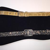 Lot of 2 - via Spiga Belts Snake & Croc Print Silver Metal Browns Small Photo