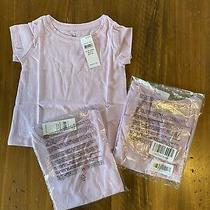 Lot of 3 Baby Gap 12-18 Month Girls Shirts Purple New  Photo