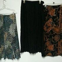 Lot of 3 Women's Large Long Skirts. Amanda Smith With Tags. Elements Miss Ash   Photo