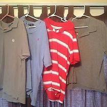 Lot of 4 Large Polo Shirts Polo by Rl Chaps Mossimo Sonoma Photo