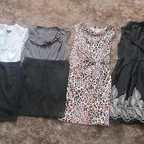 Lot of 4 Womens Dresses From Expressincdana Buchman Photo