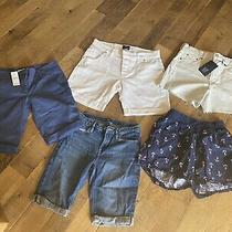 Lot of 5  Womens Shorts Gap Loft  Ll Bean Some Nwt Size Xs 2 4 and Kids14 Photo