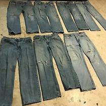 Lot of 6 Vintage Gap 1 Vintage Levis Jeans Photo