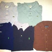 Lot of Polo Ralph Lauren and Lacoste Photo