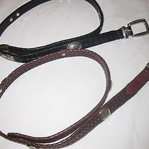 Lot of Two Brighton Leather Belts Photo