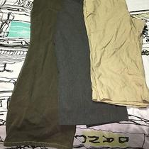 Lot Talbots Cold Water Creek Pants 24w Photo