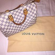 Loui Vuitton Handbag Photo