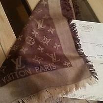 Louis Vuitton Brown Scarf Photo