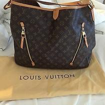 Louis Vuitton Delightful Gm Photo