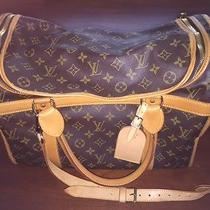 Louis Vuitton Monogram Canvas Sac Chien 50 Dog Carrier Bag Photo