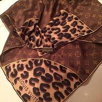 Louis Vuitton Monogram Scarf Photo