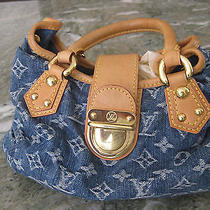 Louis  Vuitton Pleaty Handbag Photo