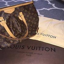 Louis Vuitton Purse Photo