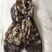 Louis Vuitton Scarf Photo