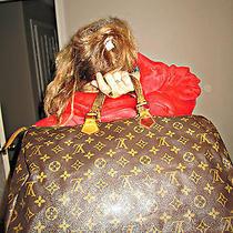 Louis Vuitton Speedy 40 Photo