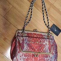 Love Moschino Luxury Bag Photo