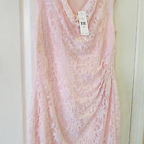 Lovely Blush Pink Ralph Lauren Lace and Sequin Nwt Retail 190.00 - Size 14w Photo