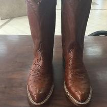 Lucchese 1883 Full Quilt Ostrich Factory Restored 8 1/2 Ee Men's Boots Photo