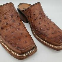 Lucchese 2000 Brown Exotic Handmade Full Quill Ostrich Mules Shoes Size 7.5 B Photo