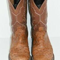 Lucchese 2000 Mens 12 D Exotic Ostrich Full Quill Brown Leather Cowboy Boots Photo