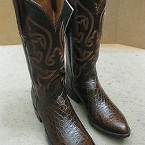 Lucchese Alligator Boots Size 7.5d Never Worn Photo