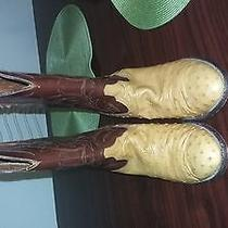 Lucchese Boots Photo