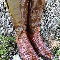 Lucchese Vintage Classics Alligator Crocodile Exotic Western Boot Men Size 11.5d Photo