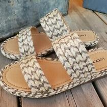 Lucky Brand Decime Fossilized Grey Tan Women's Espadrille Sandals Slides New 5 Photo