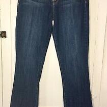 Lucky Brand Jeans Size 8/29 Regular Sofia Boot Blue Denim Photo